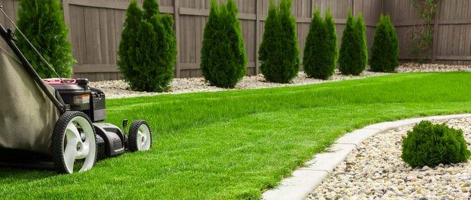 Lawnmower Buyers Guide